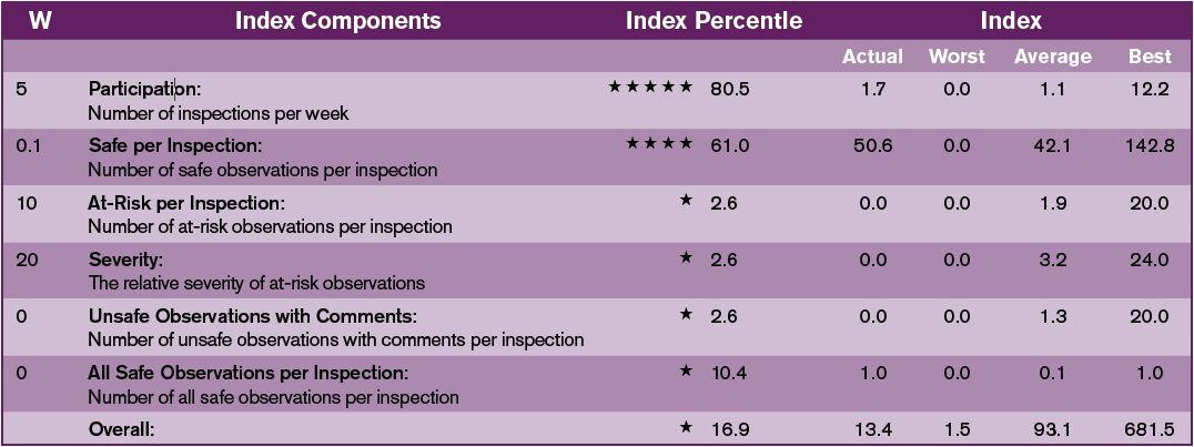 safety-observer-performance